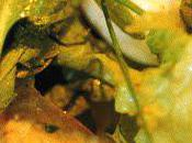 Hachis haddock poireaux pommes terre