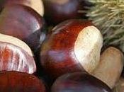 Velouté châtaigne, pomme céleri