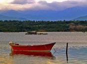Découverte étangs Diane d'Urbinu samedi Aléria.