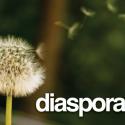 Diaspora, alternative crédible Facebook