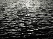photograph, poem Sophia Fine Charles Lloyd music
