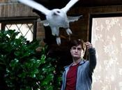 """""""Harry Potter Reliques Mort partie David Yates"""