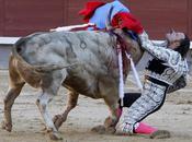 Pourquoi taureau voit-il rouge