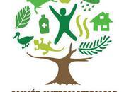 2011, Année Internationale Forêts