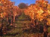 Youwine Rendez-vous Jeudi: Loiseau Vignes