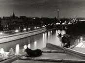 Paris Flore