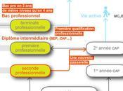 """""""Services Personnes Territoires"""" CAPA"""