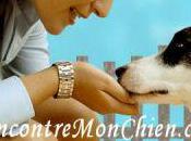 RencontreMonChien.com, site rencontre pour ceux aiment chiens.