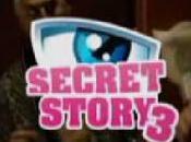 PARODIE: Dominique Strauss-Kahn dans Secret Story