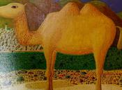 chameau bosse (lecture)