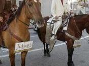They don't shoot horse they. Ellen back Avis amateurs