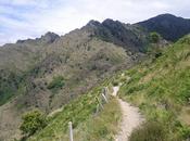4000 marches Mont Aigoual