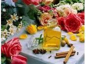 Parfum synthétique Naturel?