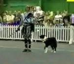 Combat gladiateurs entre chien dresseur