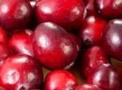 Infections urinaires cranberries réellement efficaces?