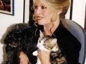 Brigitte Bardot stérilisation chats dans municipalités