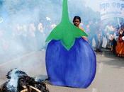 [Multinationales banksters] Monsanto poursuivi l'Inde