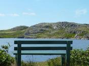 Flores paysages Saint Pierre Miquelon