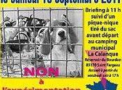 Rappel: rassemblement contre l'expérimentation animale liste marques