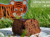 Gâteau yaourt chocolat noir