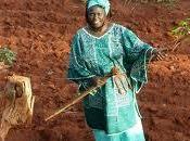 Hommage Wangari Maathai