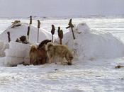 peur sila donne tempetes »les inuit sagesse territoire