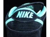 Nike Dunk 'Tiffany J-Pack'