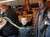 Reptil Expo visiteurs franchi
