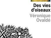 """Entretien avec Véronique Ovaldé autour """"Des Vies d'oiseaux"""""""