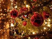 Hotte Noël