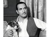Uggie, Tin, Lassie Oscars