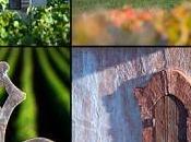 Exposition Climats Bourgogne
