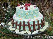Gâteau printemps framboises chocolat blanc