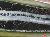 """""""quand molécules cuisinent"""""""