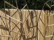 tuteurs pour plantes design