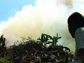 Ghana festival film d'environnement l'alliance française d'Accra