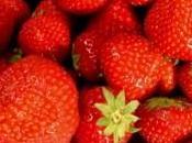 fraises: Comment peut-on planter gouverner?