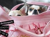 sacs transport Hello Kitty pour chiens