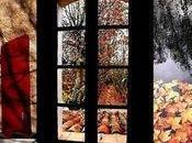 Léon Gontran Damas fenêtre ouverte demi