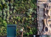 plus grand jardin vertical monde entre dans Guinness