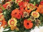 Quelles fleurs offrir pour quelle occasion