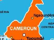 Cameroun opposition façade