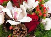 """compositions plante l'offre """"Noël jour l'an"""" Interflora"""