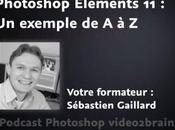 exemple dans Photoshop Elements