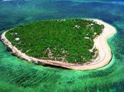 L'île coeur