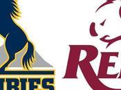 Brumbies Rugby Queensland Reds
