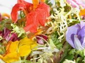 Fleurs comestibles Profitez leurs beautés jardin dans l'assiette