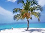 Maldives, îles paradisiaques idéales pour farniente