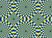 chat l'illusion d'optique