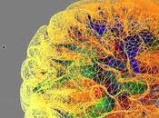 other medical discoveries appeared microscopic steps compared this: Brain project